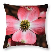 Pink Dogwood At Easter 5 Throw Pillow