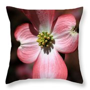 The Cross Of Christ Pink Dogwood At Easter 7 Throw Pillow