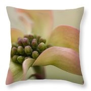 Pink Dogwood Macro Throw Pillow