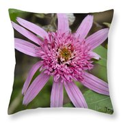 Pink Double Delight Squared Throw Pillow