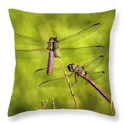 Pink Dragonflies Throw Pillow
