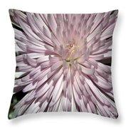 Pink Duvet Cover Throw Pillow