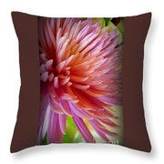 Pink Energy Throw Pillow