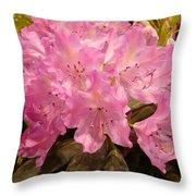 Pink Fiesta Throw Pillow