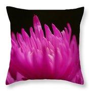 Pink Fire 3 Throw Pillow