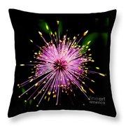 Pink Fireworks  Throw Pillow