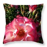Pink Flaminco Rose 2 Throw Pillow