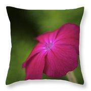 Pink - Floral Art Print Throw Pillow