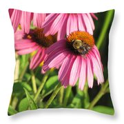 Pink Flower And Bee Throw Pillow