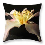 Pink Flower Azalea . Throw Pillow