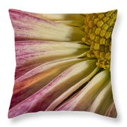 Pink Flower Macro Throw Pillow