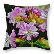Pink Flower On Brier Island In Digby Neck-ns Throw Pillow