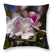 Pink Flowering Crabapple Blossoms Throw Pillow