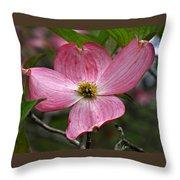Pink Flowering Dogwood Throw Pillow