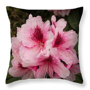 Pink Flowers In Spring Throw Pillow