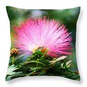 Pink Fluff Throw Pillow