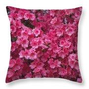 Pink Full Frame Azalea Blossoms Throw Pillow