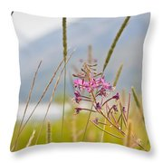 Pink Gem - Fire Weed Wildflower In Grand Teton National Park - Wyoming Throw Pillow