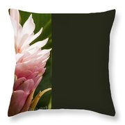 Pink Ginger Plant Throw Pillow