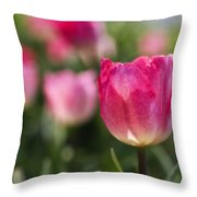 Pink Glowing Tulip Throw Pillow
