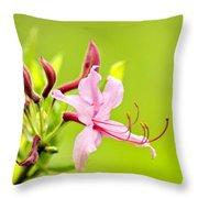 Pink Honeysuckle Flowers Throw Pillow