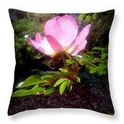 Pink Illumination Throw Pillow