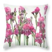 Pink Iris Throw Pillow