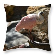 Pink Is Pretty Throw Pillow