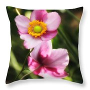 Pink Japanese Anemone Throw Pillow