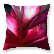 Pink Journey Throw Pillow