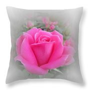 Pink Knockout Beauty Throw Pillow