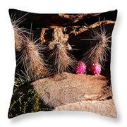 Pink Lady Cactus Throw Pillow