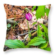 Pink Ladyslipper Throw Pillow