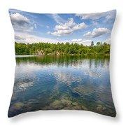 Pink Lake Throw Pillow