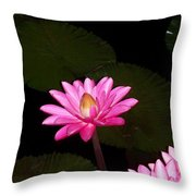 Pink Lilies And Pads Throw Pillow