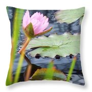 Pink Lily And Pads Throw Pillow