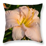 Pink Lily At Sunset 1 Throw Pillow