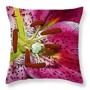 Pink Lily Painterly Throw Pillow