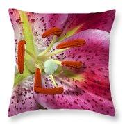 Pink Lily Up Close Throw Pillow