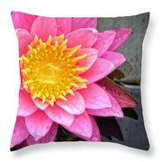 Pink Lotus Flower - Zen Art By Sharon Cummings Throw Pillow