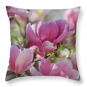 Pink Magnoloias In Bloom Throw Pillow