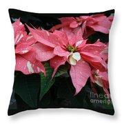 Pink Marble Poinsettia Throw Pillow