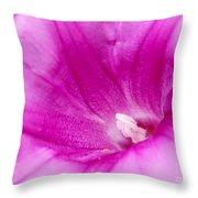 Pink Morning Glory Flower Macro Throw Pillow