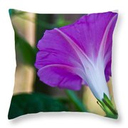 Pink Morning Glory Throw Pillow