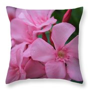 Pink Oleander 6 Throw Pillow