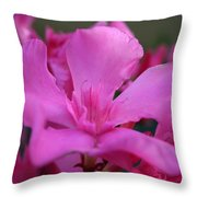 Pink Oleander Flower With Green Leaves In The Background   Throw Pillow