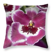 Pink Pansy Orchid Throw Pillow