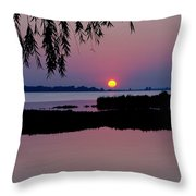 Pink Paradise Pond Throw Pillow