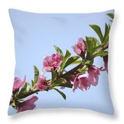 Pink Peach Blossoms Throw Pillow
