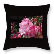 Pink Pearl Rhododendron Throw Pillow